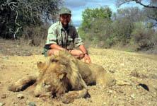 Un león ataca a cazadores