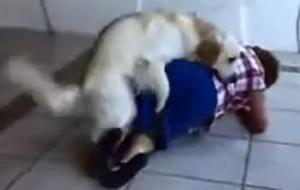 perro y señora