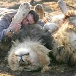 Reportaje sobre Kevin Richardson, el señor de las bestias