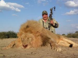 leon muerto caza