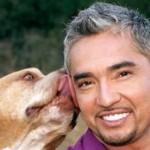 Entrevista a César Millán, el encantador de perros