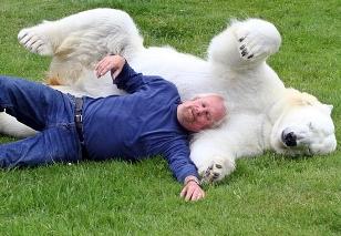 El hombre que se baña con un oso polar