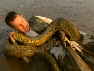 Hombre y mujer miden una anaconda