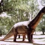 Redes – Cómo Eran Los Dinosaurios