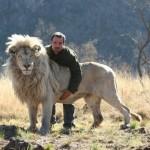 Kevin Richardson con leones