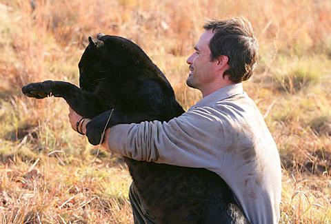 kevin richardson leopardo negro pantera