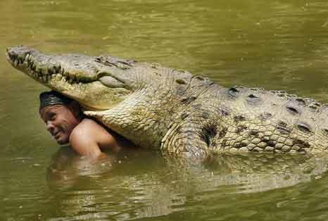 Hombre nadando con un cocodrilo