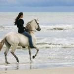 Un día en la playa con Alycia Burton y sus caballos