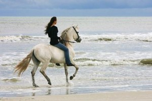 caballos cabalgando playa