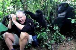 familia gorilas hombre