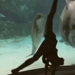 Encuentro entre delfin y una chica que baila