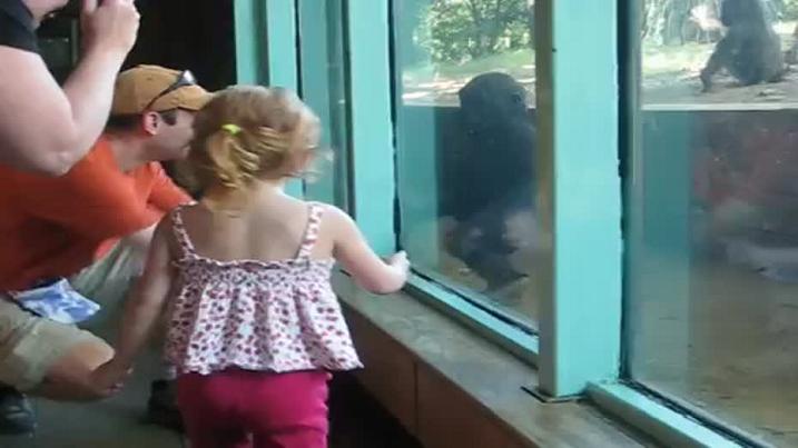 niña gorila jugando