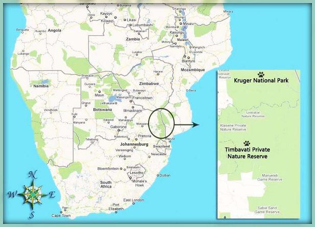reserva natural timbavati plano mapa