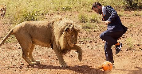 Kevin Richardson jugando a futbol con leones
