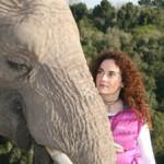 Documental – La comunicadora animal, Anna Breytenbach