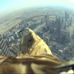 Dubai a vista de aguila