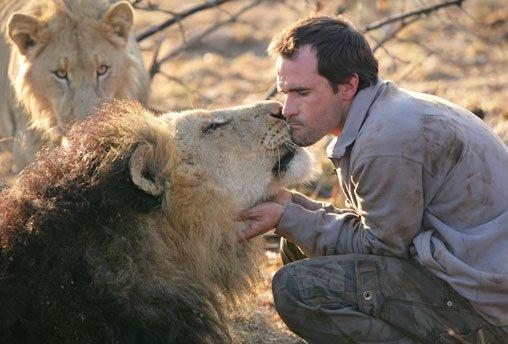 hombre jugando leones