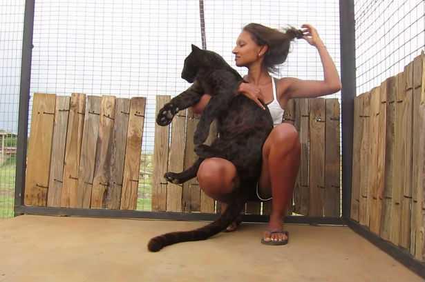 Mujeres jugando con pantera negra