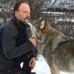 Encuentro con lobos salvajes amorosos