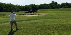 cocodrilo miami golf