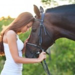 Divertido vídeo con una mujer y un caballo desbocado