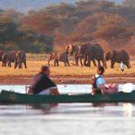 Documental – África extrema. El Parque Nacional del lago Manyara