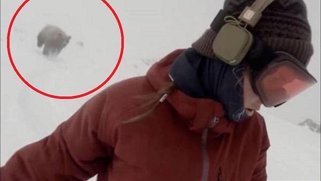 mujer snowboard oso