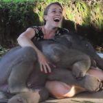 Bebe elefante sorprende a su cuidadora con un abrazo