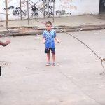 Perro juega con niños a saltar a la comba