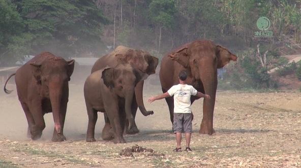 hombre llamado elefante