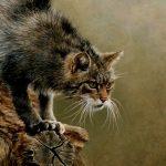 Grandes documentales – Pequeños depredadores