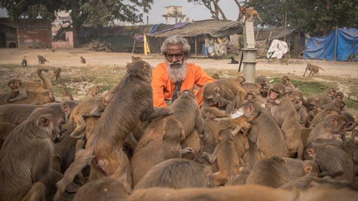 hombre-mono-india