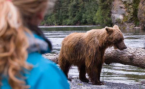 oso gente