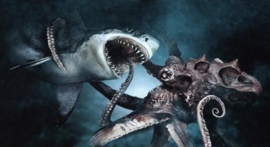 pulpo gigante tiburon peleando
