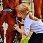 Niño dando los buenos días a los caballos