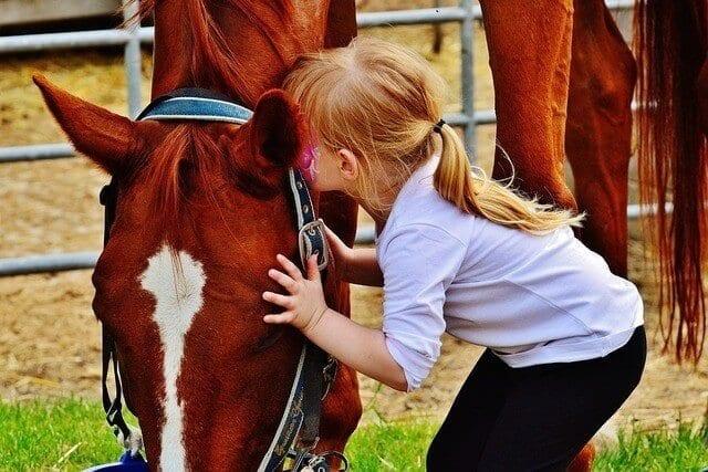 niña saludando caballo